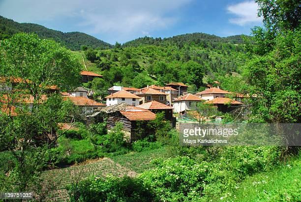Rural village with kitchen garden in mountains