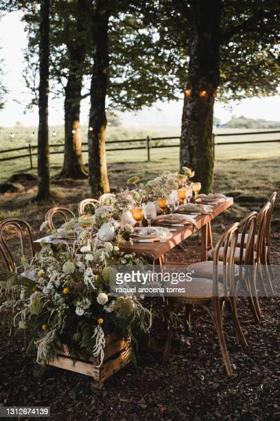 rural wedding reception in the forest with wooden table and colored glasses - wedding stock pictures, royalty-free photos & images