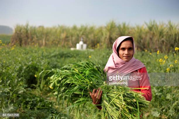 Rural women carrying animal silage