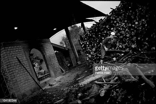 Rural worker feeds the fire in the place where leaves are dried in July, 2005 in Tamandua, Argentina. This stage is one of the last of the whole...