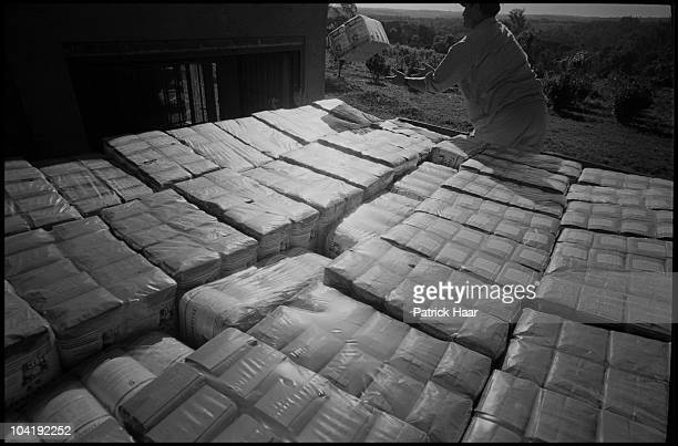 Rural workers load a truck with packets of yerba mate ready to be distributed in supermarkets and local shops on July, 2005 in Tamandua, Argentina....