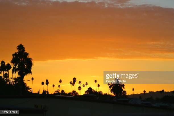 rush hour on the los angeles highway during sunset - national landmark stock pictures, royalty-free photos & images