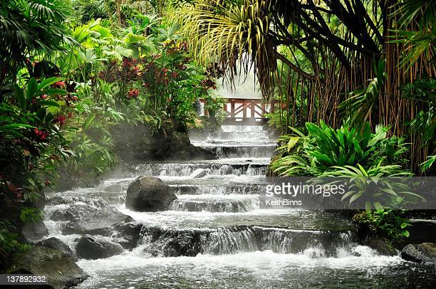 a rushing river in the tropical rainforest - costa rica stock photos and pictures