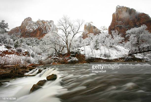 Rushing River in Winter Zion National Park