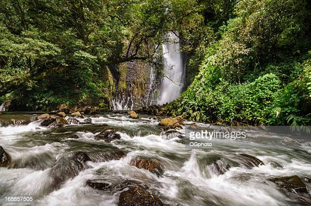 rushing water from a tropical waterfall - ogphoto stockfoto's en -beelden