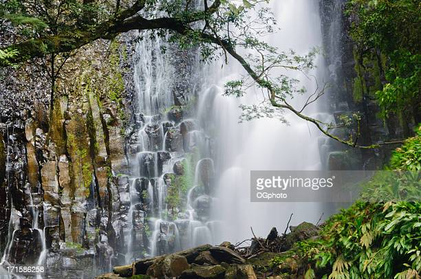 rushing water from a tropical waterfall - ogphoto stock pictures, royalty-free photos & images