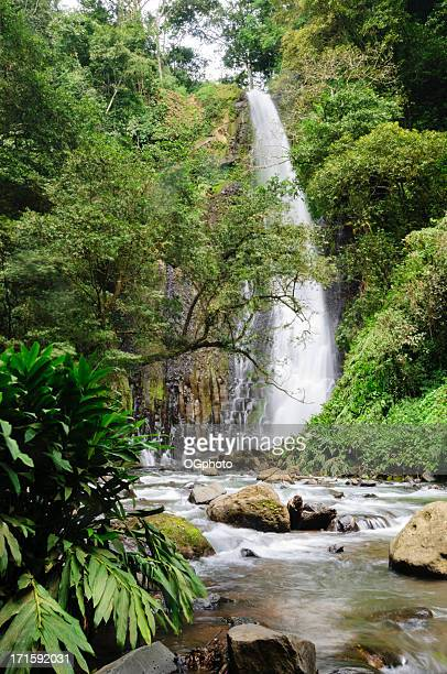 rushing water from a tropical waterfall - ogphoto stock photos and pictures