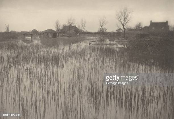 Rushy Shore, 1886. Artist Dr Peter Henry Emerson. .