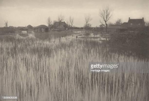 Rushy Shore, 1886. Artist Dr Peter Henry Emerson. .