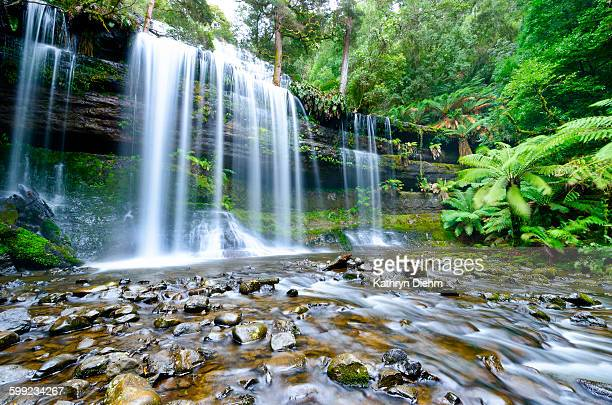 russell falls mount field nationala park tasmania - tasmania stock pictures, royalty-free photos & images