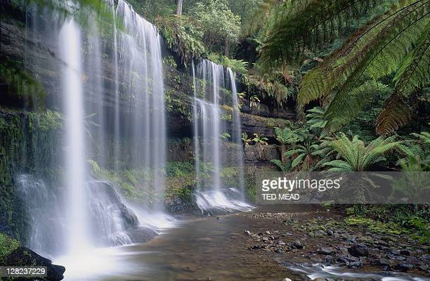 russell falls, mt field national park, tasmania - ted russell stock pictures, royalty-free photos & images