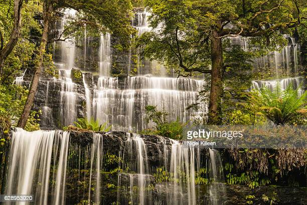russell falls, tasmania - hobart tasmania stock pictures, royalty-free photos & images