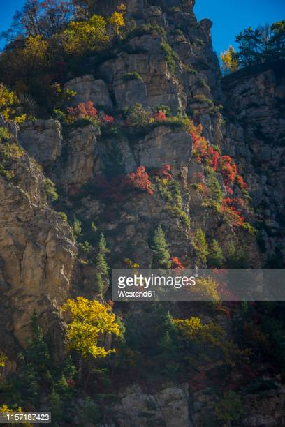 russia, caucasus, chechnya, the caucasian mountains in fall - chechnya stock pictures, royalty-free photos & images