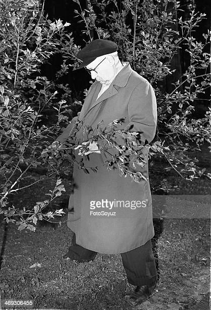 Russia, Center, Moscow Region, 1960s: Aircraft designer Andrey Tupolev in his garden, 1969.