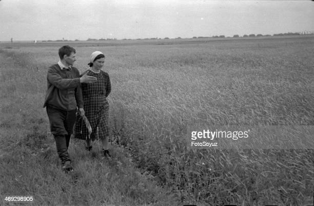 Russia, Center, Tambov Region, 1950s: Good shoots, In post-war village, August, 1950.