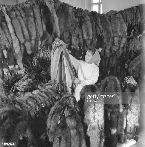 Hunting trading station Fur quality control