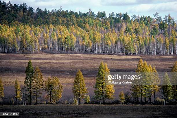 Russia Siberia Landscape Transsiberian Railwaybetween Ulan Ude And Irkutsk