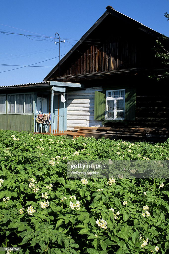 Russia, Siberia, Yenisey River, Turuchansk, Local House With Potatos.