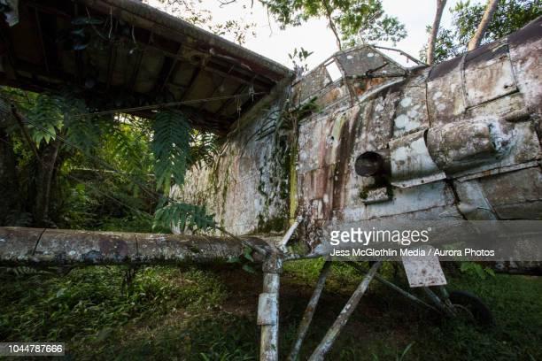 Russian Antonov airplane decaying in Peruvian jungle. Villa Carmen Biological Research Station, Peru.