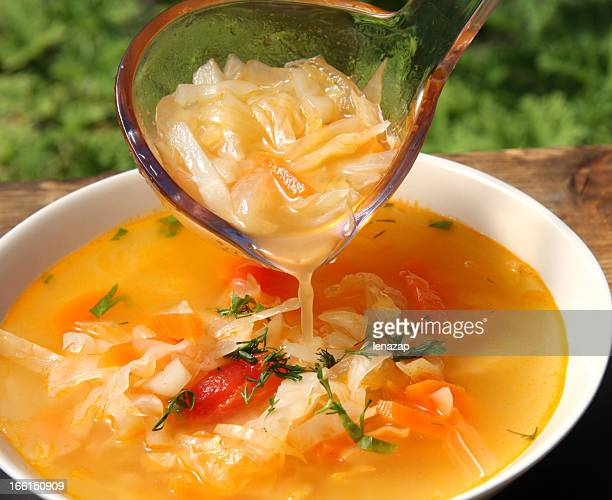 russian cabbage soup schi - cabbage stock pictures, royalty-free photos & images