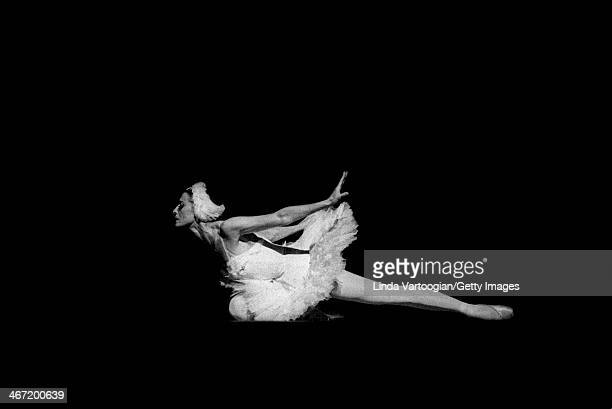 Russian dancer prima ballerina assoluta Maya Plisetskaya dances 'The Dying Swan' during a Stars of the Bolshoi Ballet performance at Lincoln Center's...