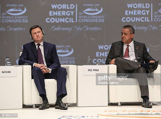 Russian Energy Minister Alexander Novak and the Minister of Petroleum of Venezuela Eulogio Del Pino attend a session titled 'The commodity price...
