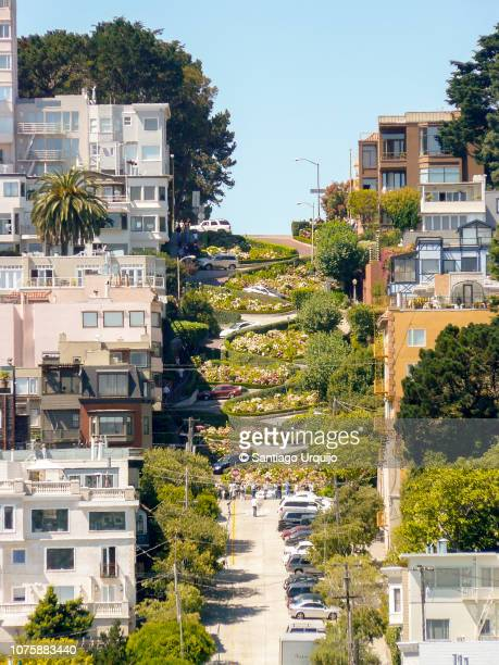 russian hill and lombard street in san francisco - lombard street san francisco stock pictures, royalty-free photos & images
