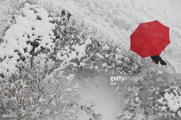 A Russian man carrying a red umbrella walks down a snowy sidewalk in St Petersburg on November 10 2009 during the city's first major snowfall...