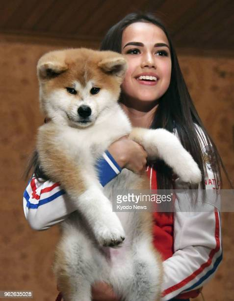 Russian Olympic figure skating champion Alina Zagitova holds an Akita puppy she received from a group preserving the Japanese dog breed at a ceremony...