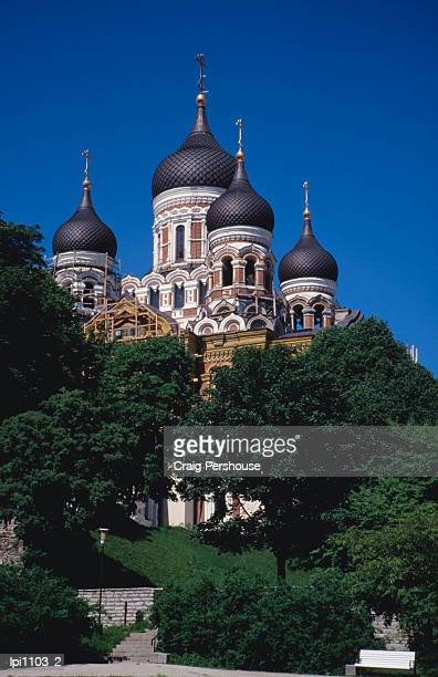 russian orthodox alexandr nevsky cathedral, built between 1894 and 1900, low angle view, tallinn, estonia - harjumaa stock pictures, royalty-free photos & images