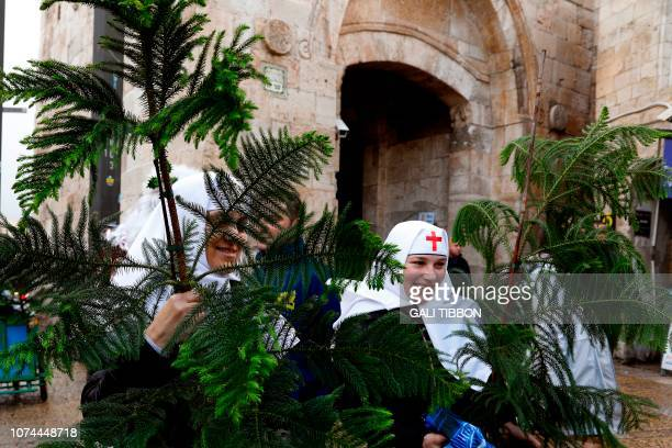 Russian Orthodox nuns carry Christmas trees distributed by the Jerusalem municipality to Christian residents at Jaffa Gate in Jerusalem's Old City on...