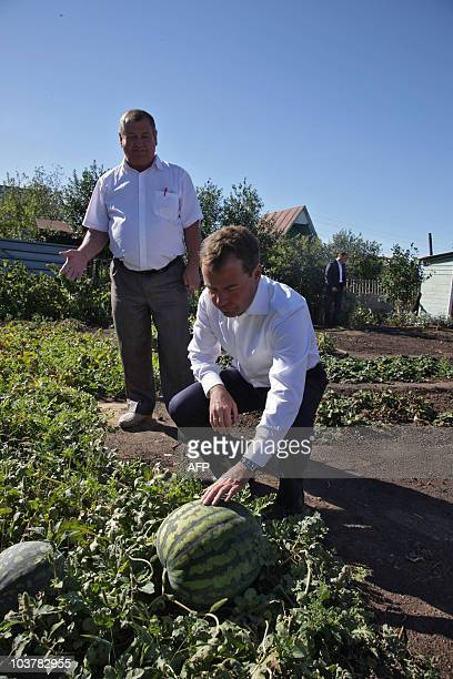 Russian President Dmitry Medvedev visits the Industrial agricultural company in the Orenburg region on September 1, 2010. AFP PHOTO/ RIA-NOVOSTI/...