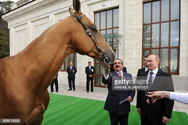 Russian President Vladimir Putin presents Bahrain's King Hamad bin Isa AlKhalifa with an AkhalTeke stallion named Khadzhibek during a meeting at the...