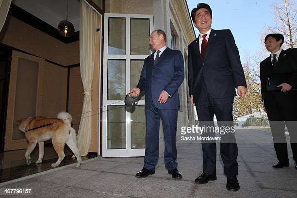 Russian President Vladimir Putin with an Akita Inu dog called Yume greets Japanese Prime Minister Shinzo Abe at the Bocharov Ruchey state residence...