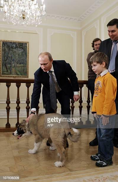 Vladimir Putin Dog Buffy Buffy Vladimir Putin's...