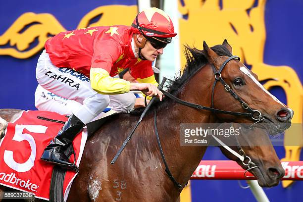 Russian Revolution ridden by Mark Zahra wins KS Environmental Vain Stakes at Caulfield Racecourse on August 13 2016 in Caulfield Australia