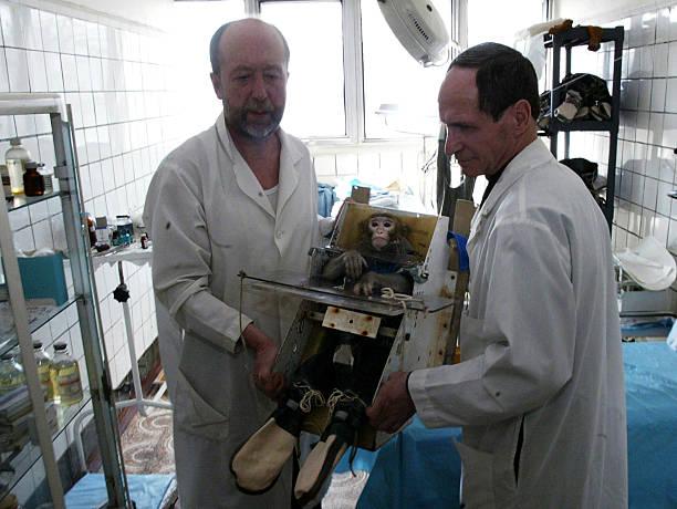 Fotos e imagens de Russian Scientists Test Health Effects ...