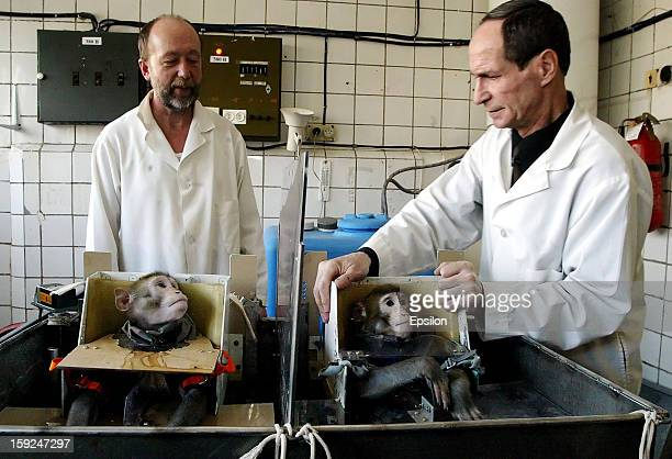 Russian scientists prepare monkeys during testing at the Medical and Biological Problems Laboratory on April 15 2003 in outside Moscow Russia Russian...