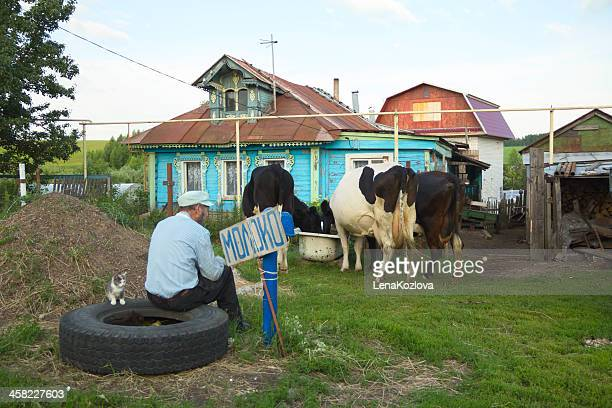 russian village - nizhny novgorod stock photos and pictures