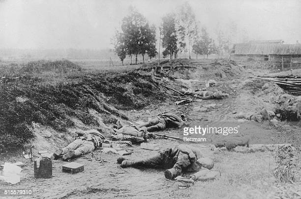 Russo-Japanese War . Battle of Riga. Russian dead in a sunken road. Undated photograph.