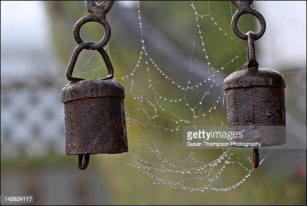 Rusted chimes and wet spiderweb