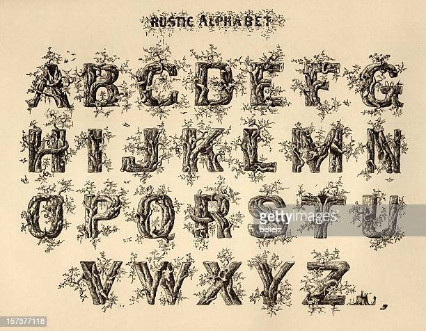 rustic alphabet - nature alphabet letters stock pictures, royalty-free photos & images