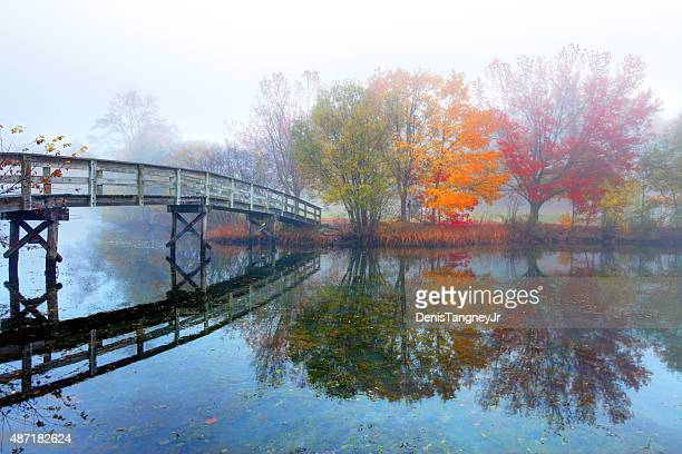 rustic bridge and autumn colors reflecting on a small pond - plymouth massachusetts stock photos and pictures