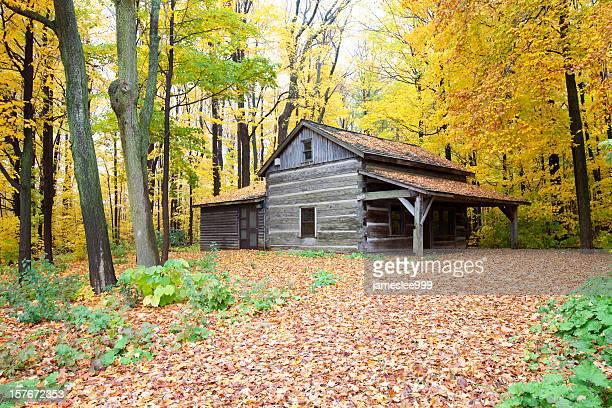 Rustikalen Hütte im Herbst Wald