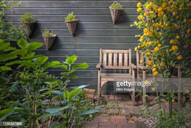rustic chairs in garden - 中庭 ストックフォトと画像