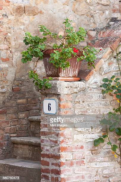 Rustic entryway into a traditional Tuscan home, a flowerpot on the stoop.