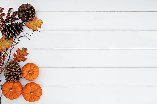 Rustic fall background 1044243476