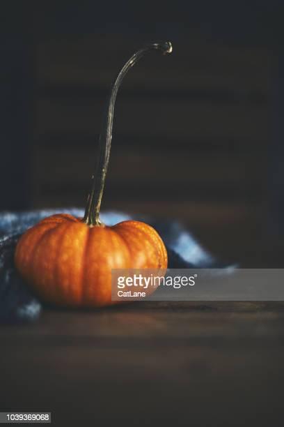 Rustikale Herbst Stillleben Hintergrund mit orange Kürbis
