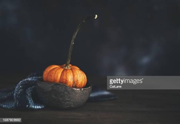 Rustikale Herbst Stillleben Hintergrund mit Kürbis