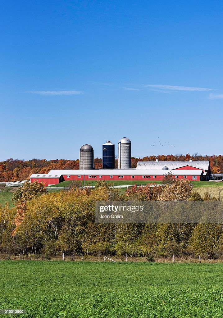 Rustic Horse Barn And Farm News Photo Getty Images